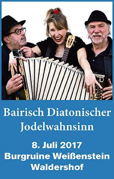 bairisch-diatonischer-jodelwahnsinn_banner_360x230