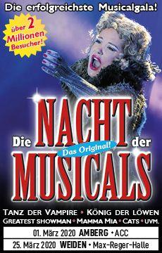 230x360-web-die-nacht-der-musical-ambergweiden